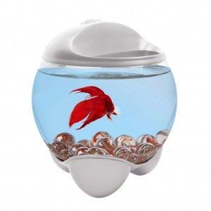 BOL TETRA BETTA BUBBLE ALB 1.8 L