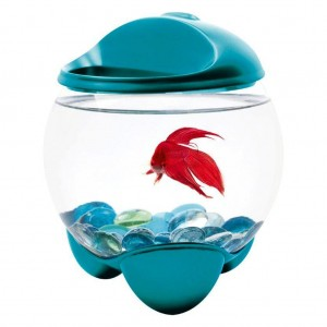 BOL TETRA BETTA BUBBLE TURCOAZ 1.8 L